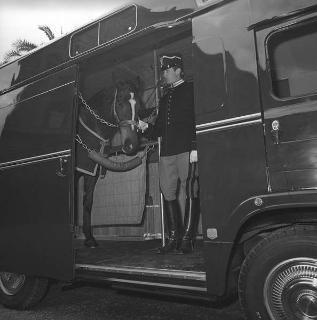 """Presentazione del pulmino """"Alfa Romeo"""" per il trasporto dei cavalli dei corazzieri"""