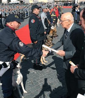 Il Presidente Giorgio Napolitano consegna alcuni attestati alle unità cinofile distintesi nell'attività di pubblica utilità, in occasione del 187° anniversario del Corpo Forestale dello Stato